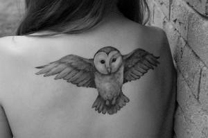 Ça compte pour un titre ?   owl-300x199